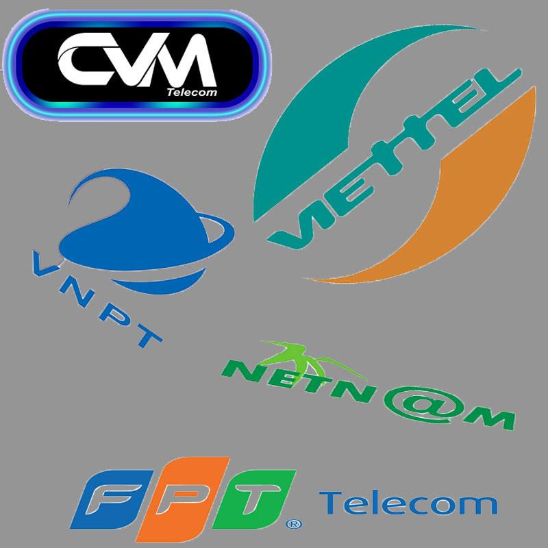 nhà mạng internet tại việt nam