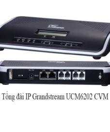 Tổng đài IP Grandstream UCM6202
